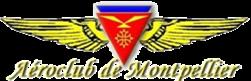 Handivol Montpellier